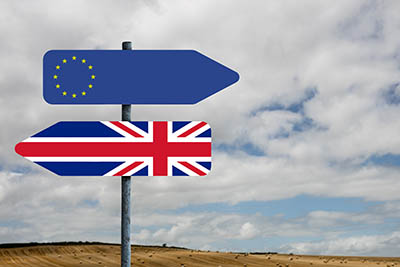 Brexit information for employers and Grooms in the Equine Industry - what is happening?