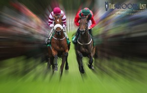 News - Equine flu outbreak sees race meets cancelled