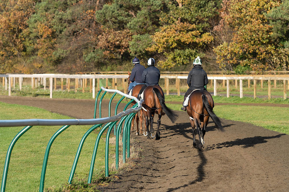 What's it like to work on a Pre-Training Yard