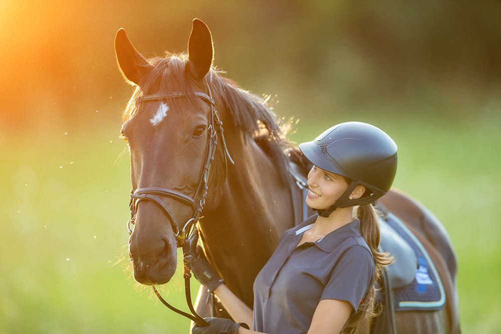 The fine art of owning AND working with horses