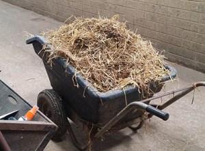 Back Pain and Yard Work - Pushing Wheelbarrows