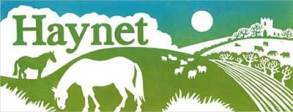 Haynet Blog for Horse Lovers