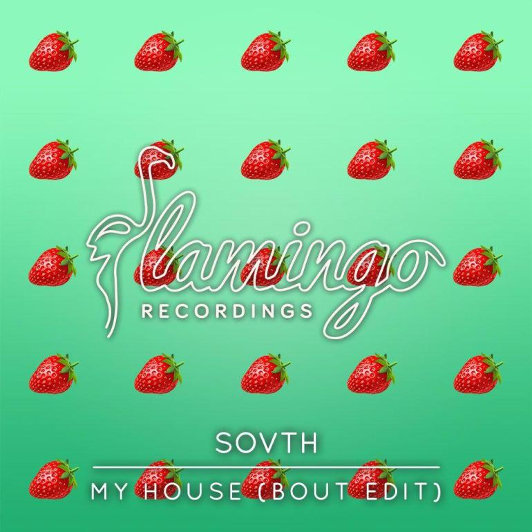 SOVTH Bout My House Flamingo Records