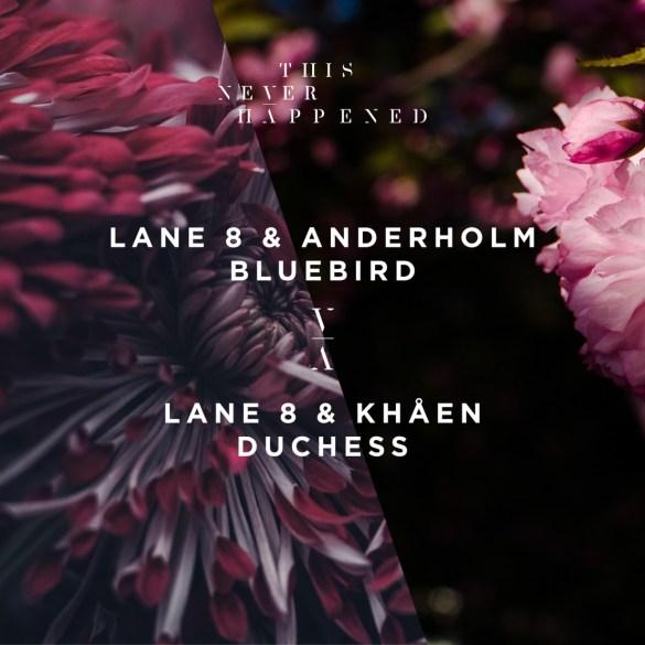 Lane 8 Anderholm Bluebird Khåen Duchess