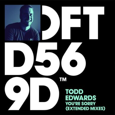 Todd Edwards You're Sorry Defected