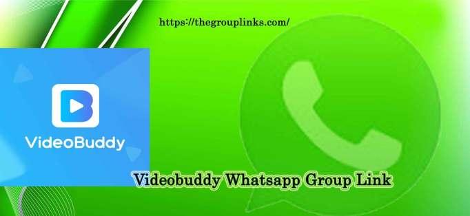 Videobuddy Whatsapp Group