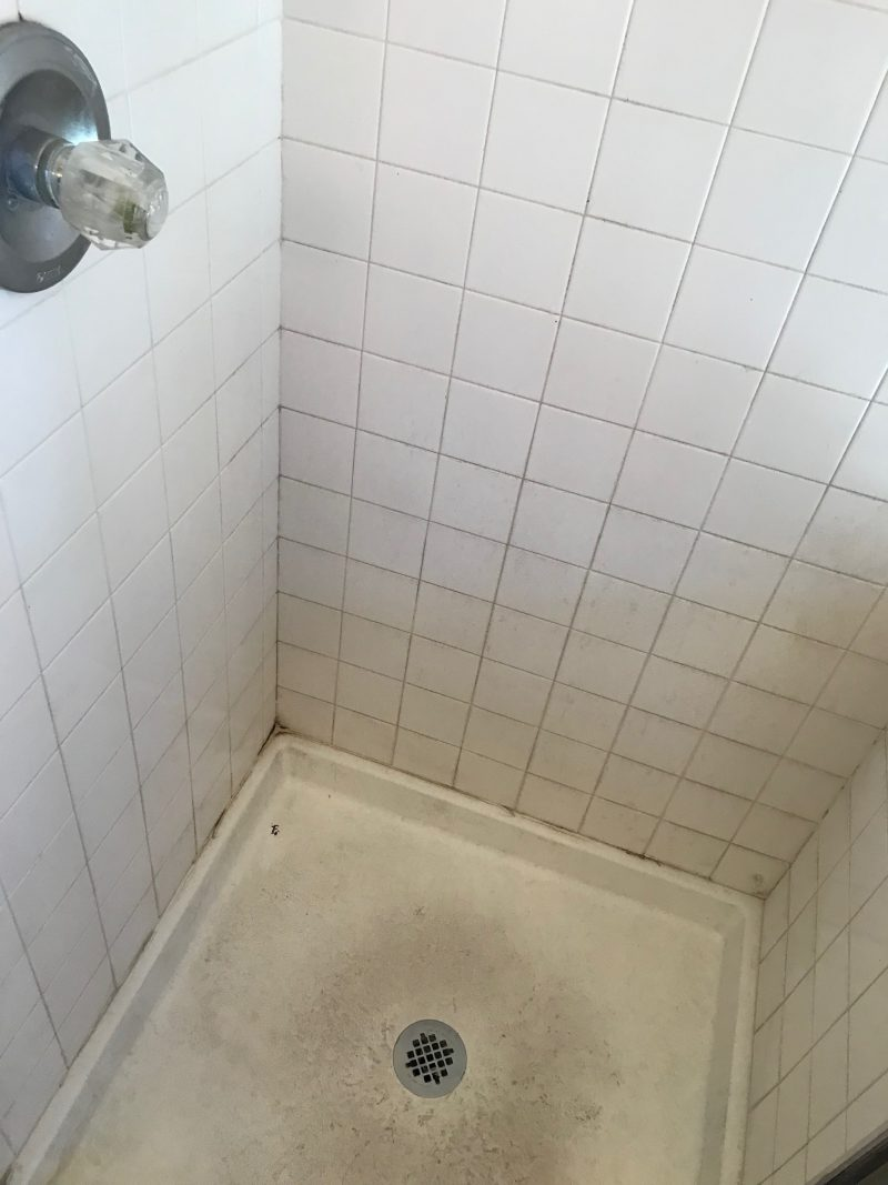 Bathroom Grout Ways To Keep Bathroom Grout Clean The Grout Specialist
