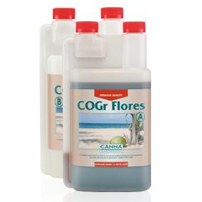 COGr Flores ab