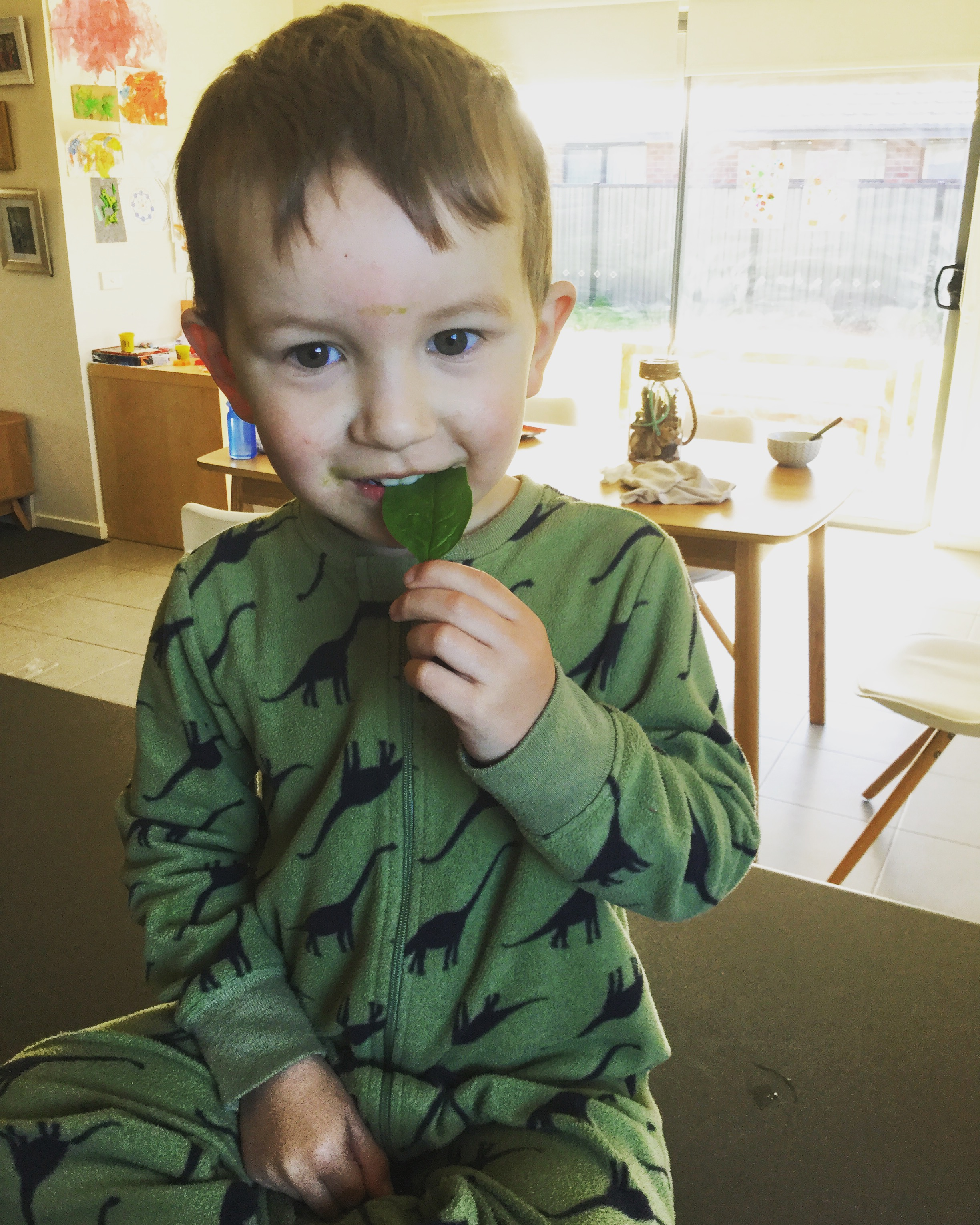 Toddler ating a super green food for the first time