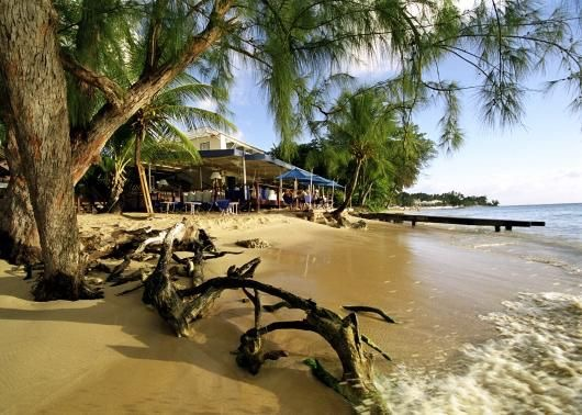 The top 5 things to do in Barbados