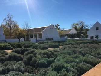 Babel-Babylonstoren-Cape-Winelands