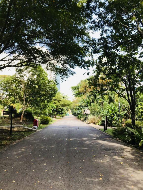 Hort-Park-Main-Path