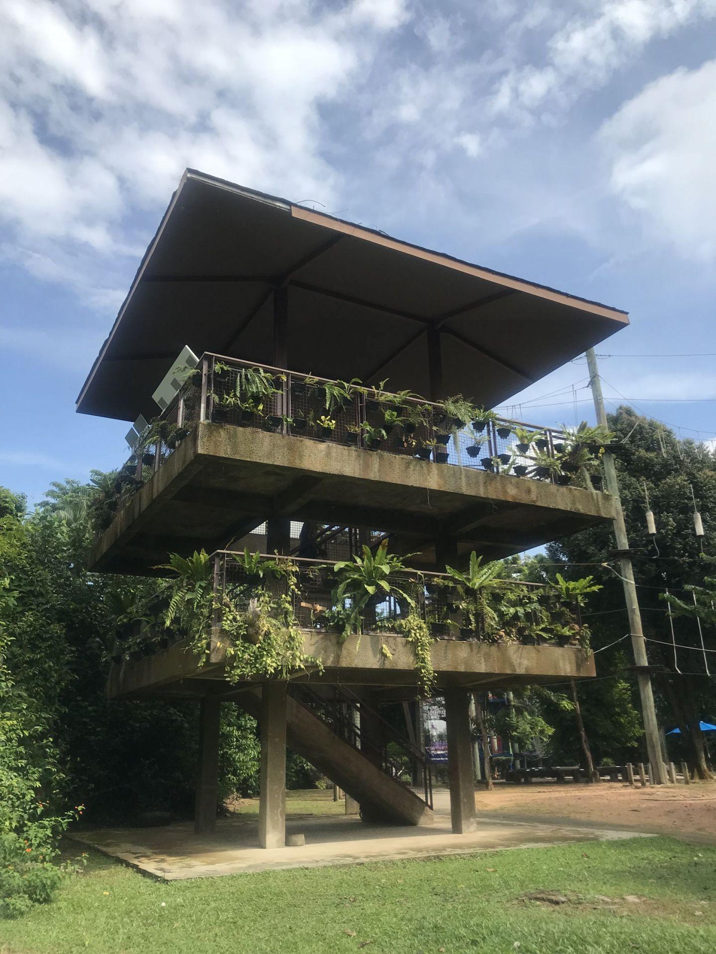 Bird-watching-tower-Imbiah