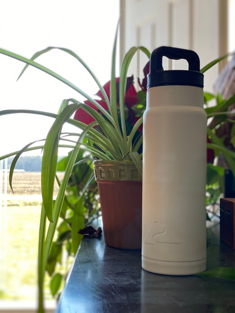 white stainless steel refillable water bottle
