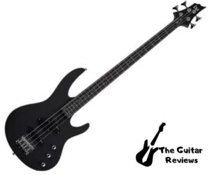 ESP LTD B-10 Best Bass Guitar under $200