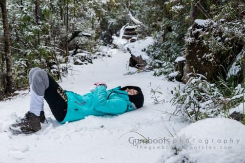 Mt Wellington snow