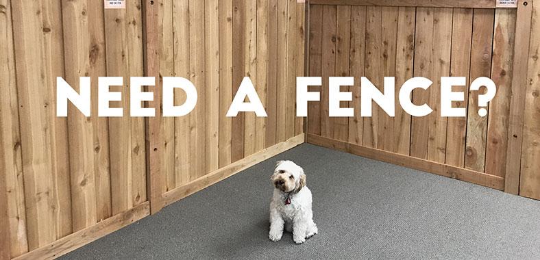 needafence-dog