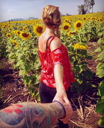 Take me to a Sunflower field