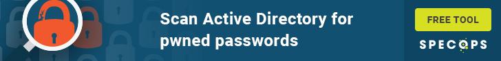 password auditor
