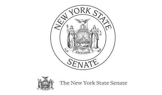"""The New York State Senate Attacked by Hacker Group Swan: Press Release """"Stop War in Syria!!!"""""""