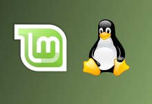 Ubuntu Vs. Linux Mint: Which One Is Better For Beginners?