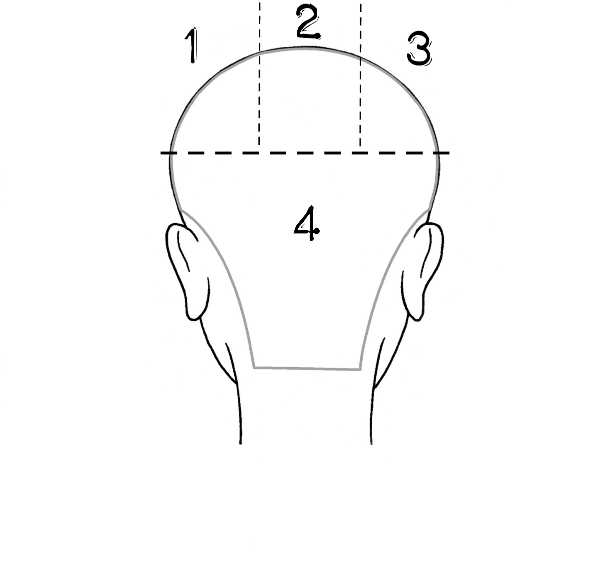 pin curl diagram labeled of spinal column curls around the world  hairspray diaries