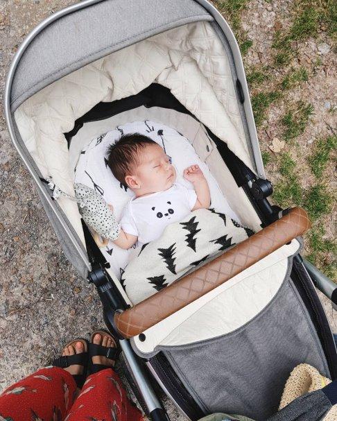 5 weeks of Ollie   Newborn in Pram   The Halcyon Years