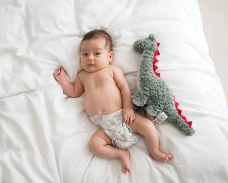8 week old baby boy with dinosaur  The Halcyon Years