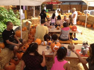 sd-childrens-discover-museum-fall-festival-pumpkin-patch