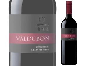 Valdubón, el vino que vale oro
