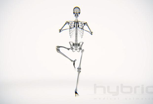 Yoga visto a través de Rayos X