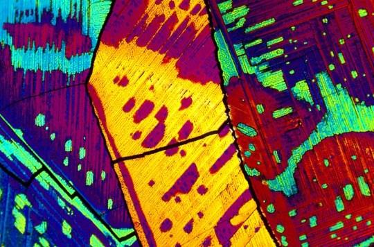 Así se ve el tequila (y otros drinks) bajo el microscopio - Mint-Julep
