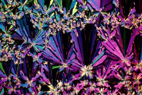 Así se ve el tequila (y otros drinks) bajo el microscopio - jugo-de-arandano