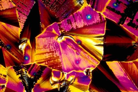 Así se ve el tequila (y otros drinks) bajo el microscopio - sake
