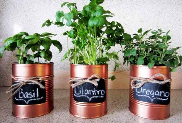 Cultiva tus propios condimentos de cocina con estas cinco ideas de decoración - hierbas-en-lata-1024x694