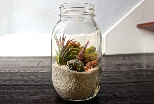 DIY: Haz tu propio terrario en un Mason Jar - terrario-mason-jar-1024x694