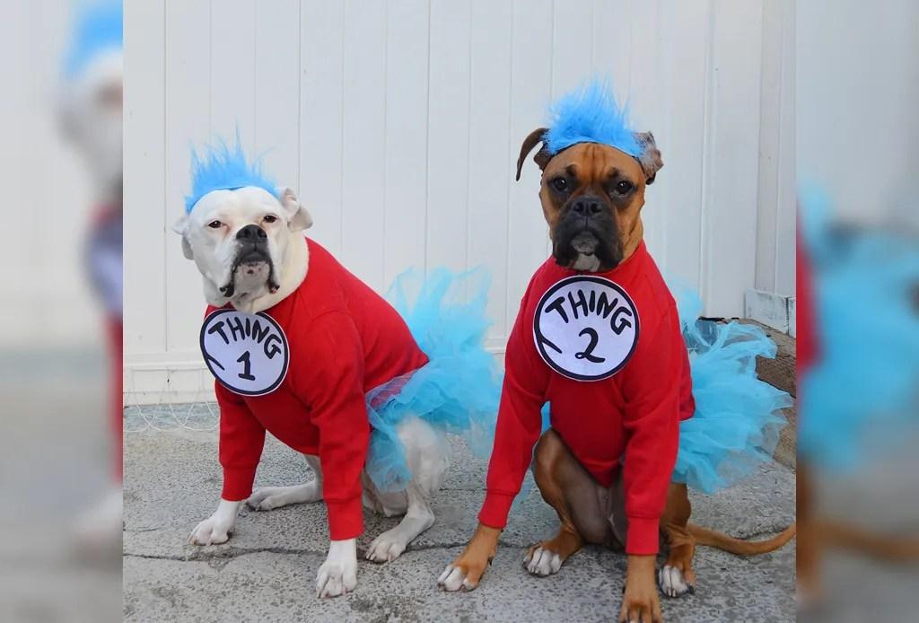 Los disfraces para perro más divertidos para este Halloween - disfraces-para-perro