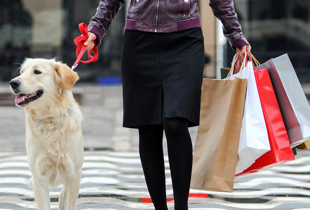 Los centros comerciales pet-friendly en la CDMX