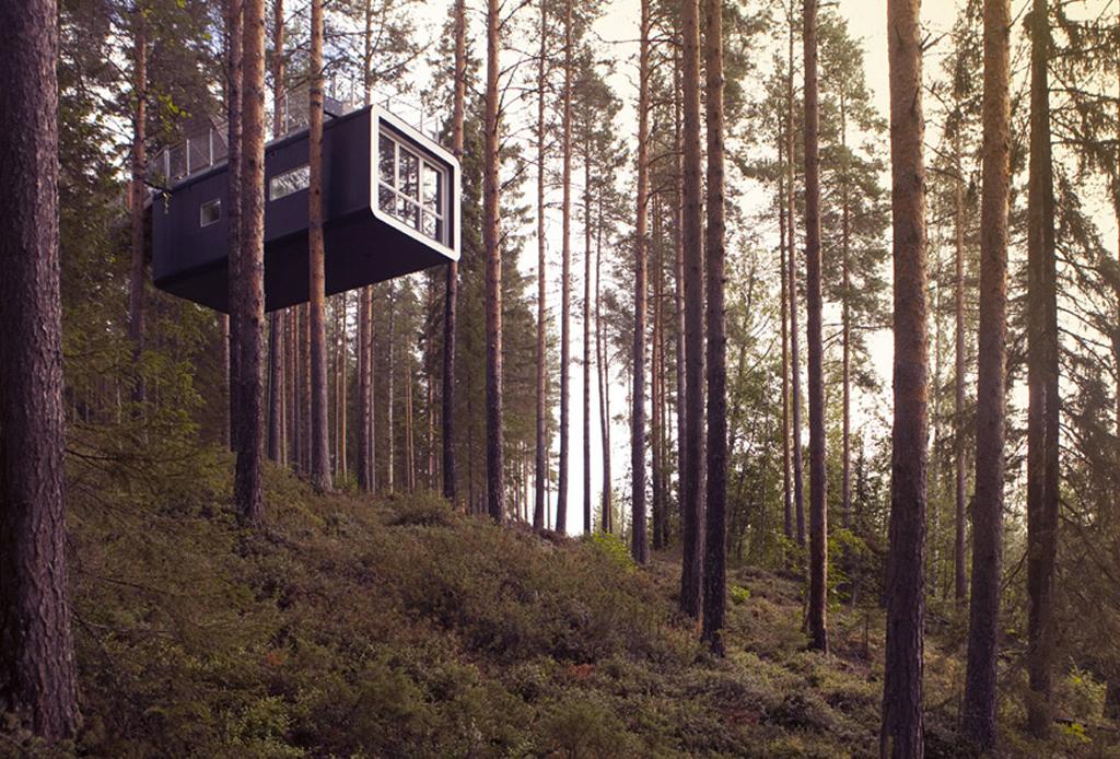 7 opciones de hospedaje para los amantes del ecoturismo - the-cabin-hotel-de-arbol