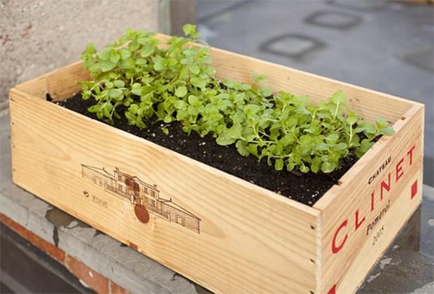 5 ideas para almacenar tus plantas con mucho estilo - 00-caja-plantas-1024x694