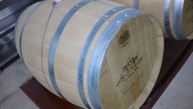 Conoce los viñedos de la Ruta del Vino en Querétaro - vinedo-los-rosales-1024x576
