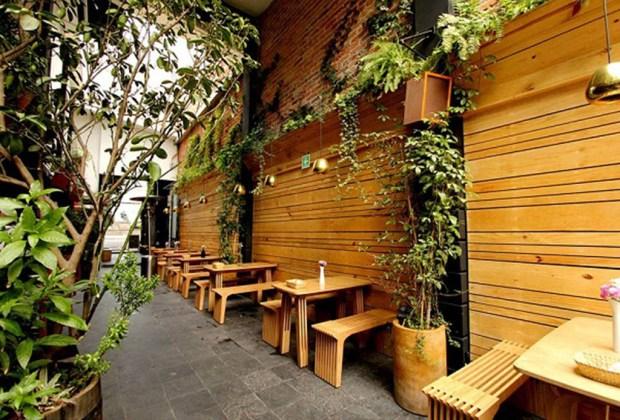 Los mejores lugares para disfrutar un gin en la CDMX - patio-aurora-1024x694