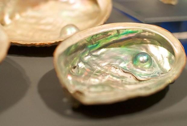 La guía que necesitas para comprar perlas auténticas - perlas3-1024x694