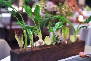 Tendencia de foodies modernos: de la comida rápida a la granja
