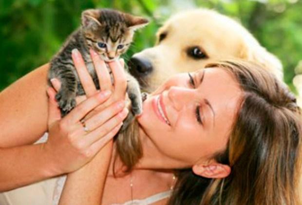 6 beneficios de tener una mascota en casa - estado-1024x694