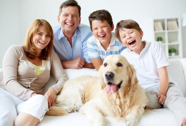 Razas de perros ideales para convivir en familia - perros-familia-1024x694