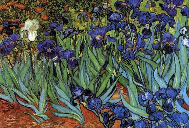 Las obras de arte más caras de Vincent Van Gogh - iris-1024x694