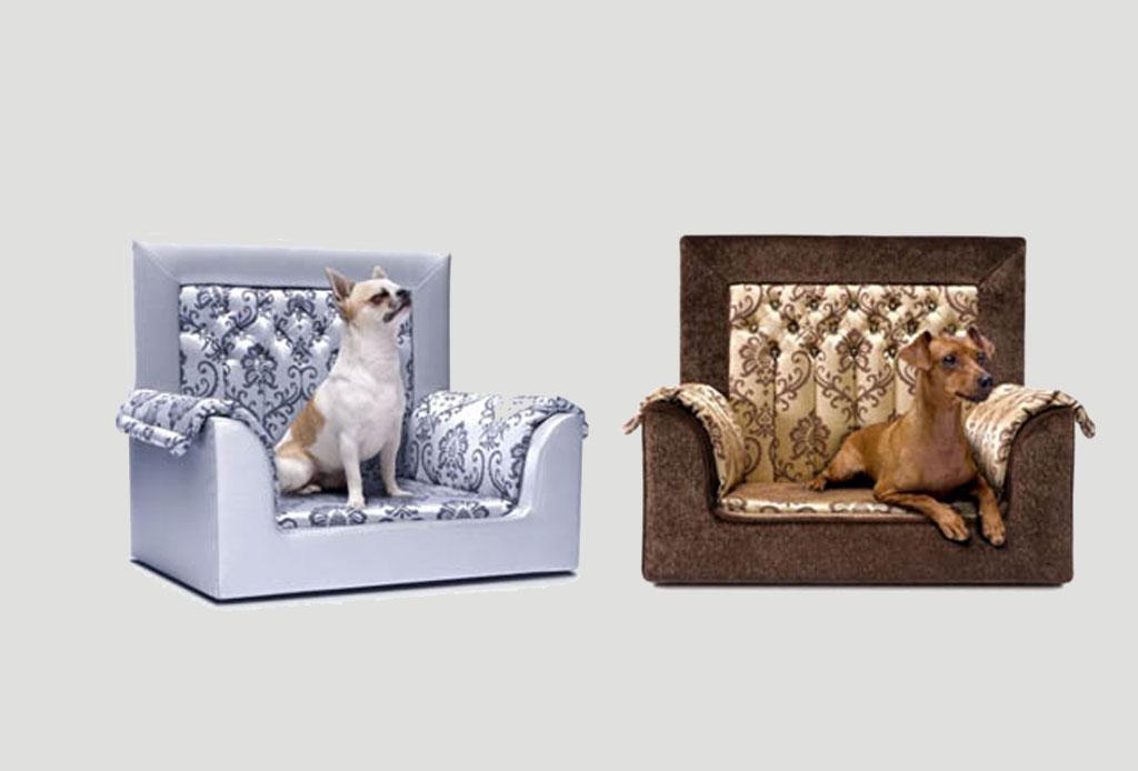 Conoce los muebles más costosos para mascotas - perros-mas-caro-muebles-5