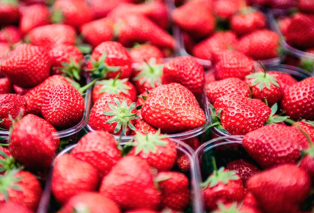 Si te gusta compartir comida con tu perrito, estas 10 frutas son ideales para hacerlo - fresas-1024x694