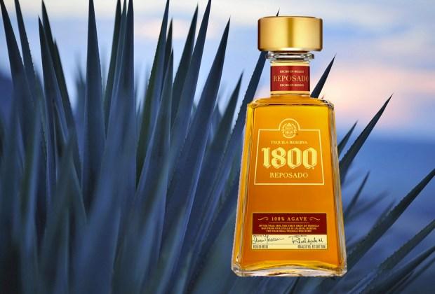 5 datos que probablemente no conocías del tequila - tequila1800-1024x694